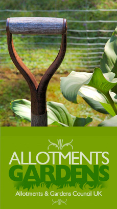 allotments and gardens